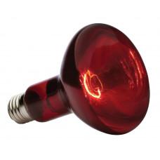 Лампа накал 250Вт E27 220В ИКЗК Калашниково (15)